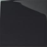 Shadow Dark Grey Gloss Medium (PRG107) Tiles