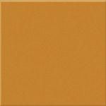 Pumpkin Gloss Medium (PRG55) Tiles