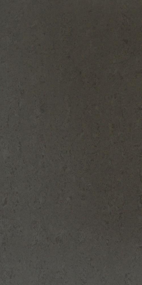 Polished Lichen Grey Stone 60x30 Tile