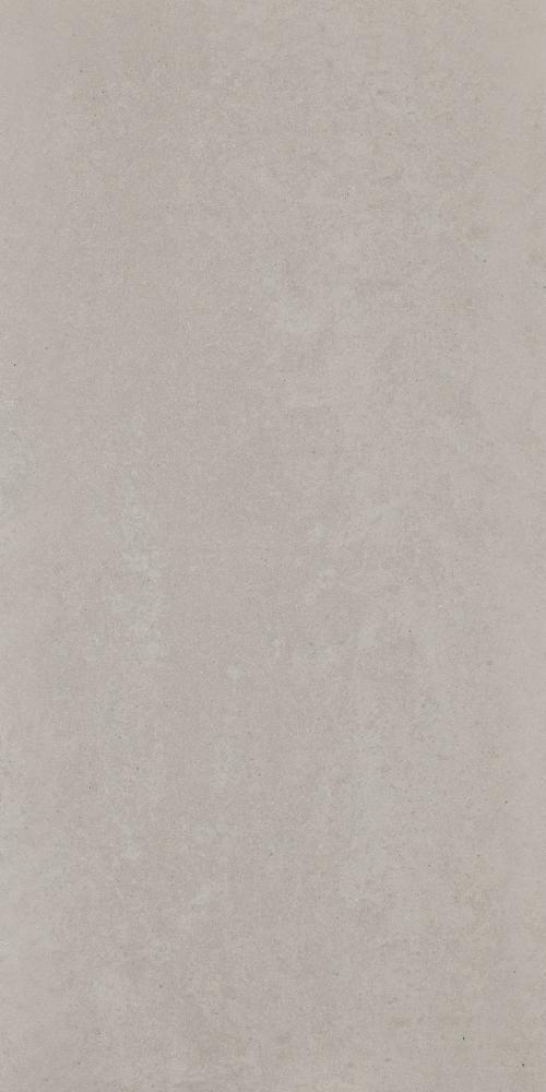 Grey Polished 600x300 Tiles
