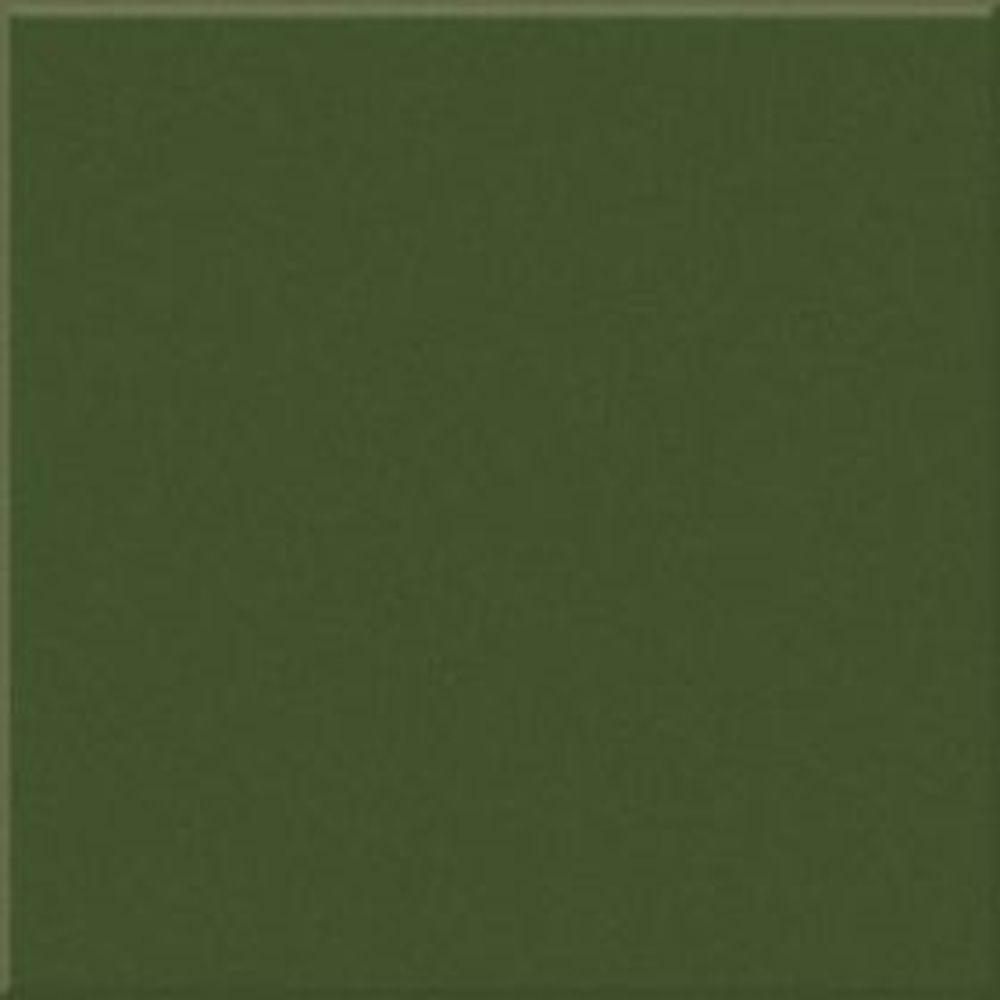 Victoria Green Gloss Medium (PRV5) Tiles