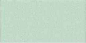 Peppermint Gloss Oblong (PRG43) Tiles