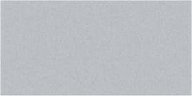 Storm Grey Gloss Oblong (PRG24) Tiles