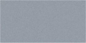 Hawk Grey Gloss Oblong (PRG7) Tiles