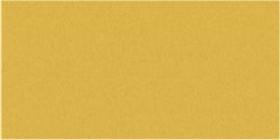 Goldcrest Gloss Oblong (PRG48) Tiles