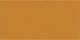 Pumpkin Gloss Oblong (PRG55) Tiles