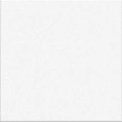 White Gloss Large (PRG1) Tiles