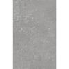 Frozen Stone 40x25 Wall Tiles