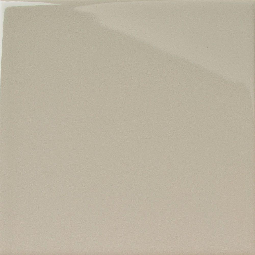 Mushroom Grey Gloss Medium (PRG108) Tiles